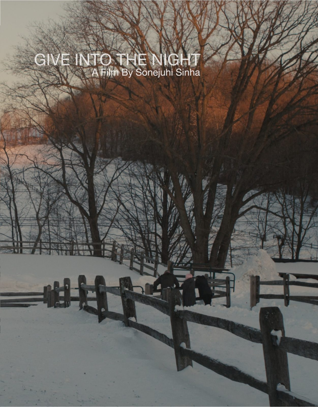 GIVEINTOTHENIGHT poster